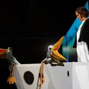 """""""Nelson der Pinguin"""" – Eine Reise vom Süd- zum Nordpol"""